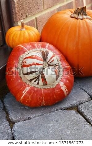 Striped Turks Turban gourd and pumpkins on a doorstep  Stock photo © sarahdoow