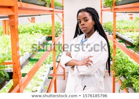 Fiatal ázsiai afrikai női dolgozik üvegház Stock fotó © pressmaster