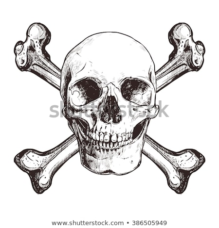 Skull and crossbones sketch of pirate symbol Stock photo © anbuch