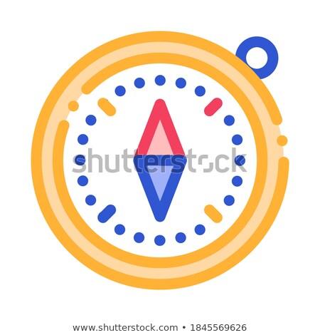 Kompas detector tool vector icon dun Stockfoto © pikepicture