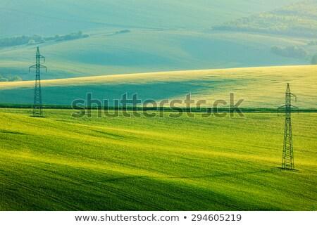 Moravian summer rolling landcsape Stock photo © dmitry_rukhlenko