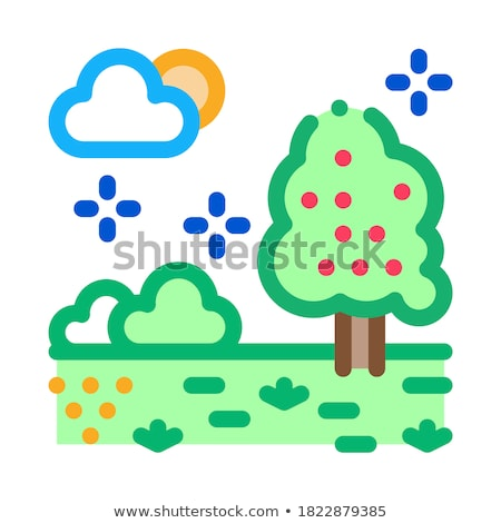 territory of well-groomed forest icon vector outline illustration Stock photo © pikepicture