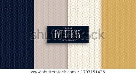 Mały geometryczny wzorców zestaw premia kolory Zdjęcia stock © SArts