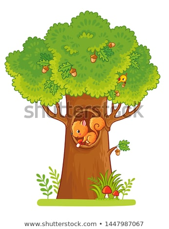 Stock photo: squirrels on tree, vector
