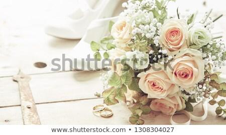 Gül vektör dizayn güller gelin Stok fotoğraf © Galyna