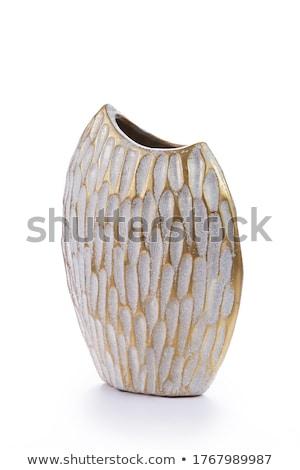 Antyczne porcelana jar nowoczesny styl odizolowany obraz Zdjęcia stock © Pilgrimego