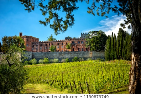 Castle of Brolio in Chianti Stock photo © prill