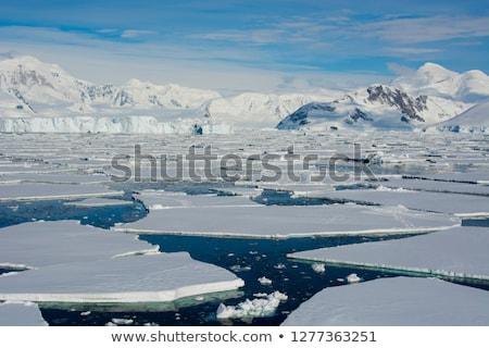 Buz deniz kar soğuk kutup küresel isınma Stok fotoğraf © timwege