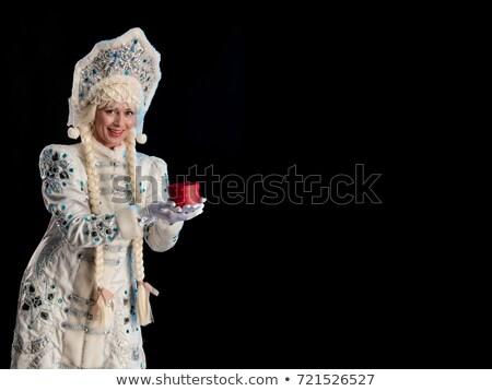 Portré hó hajadon izolált fehér divat Stock fotó © acidgrey