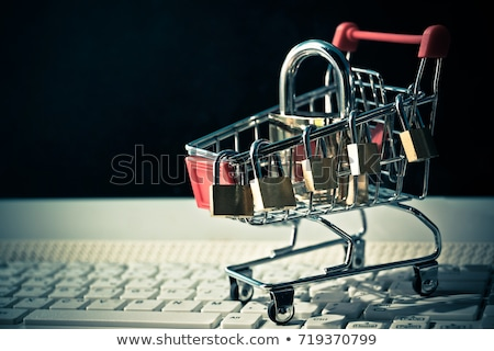 fogyasztó · védelem · illusztráció · képernyőkép · internet · keresés - stock fotó © lightsource