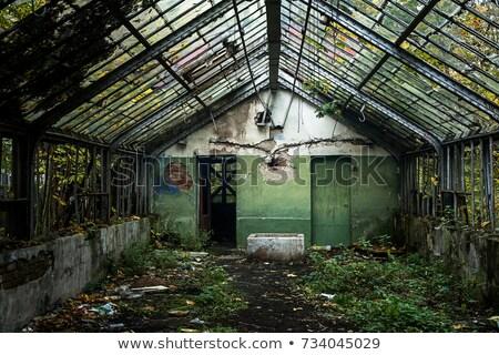 Stockfoto: Empty Greenhouse