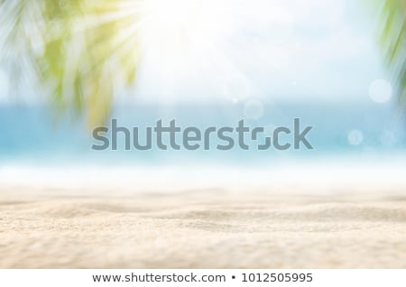 Tropical beach in sunny day. Defocused, with bokeh effect. Stock photo © moses