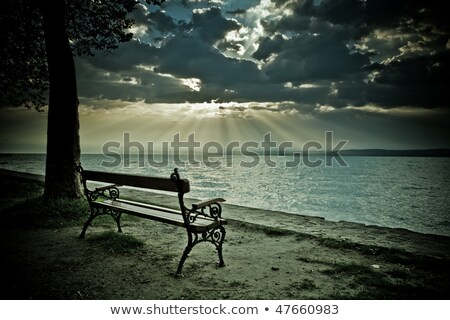 Lonley Bench Stock photo © Donvanstaden