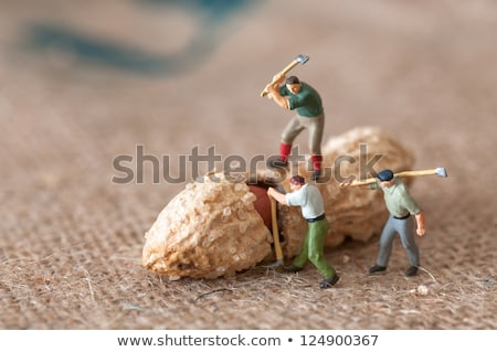 toy figures of lumbermen with a peanut stock photo © kirill_m