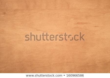 Arbre bois texture véritable menuiserie bois Photo stock © 3pphoto31