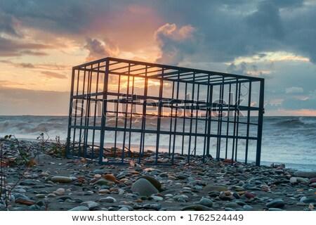 Hierro jaula vacío blanco 3d libertad Foto stock © make