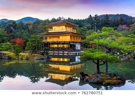 Zdjęcia stock: świątyni · kyoto · Japonia · złoty · drzewo · ogród