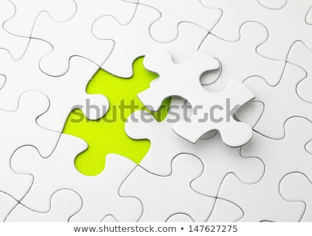 Integration Concept on Green Target. Stock photo © tashatuvango
