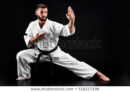 man in karate pose Stock photo © ichiosea