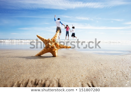 starfish in foreground as father plays with children in sea stock photo © monkey_business