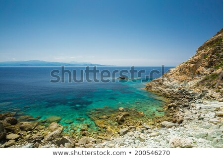 the coast of cap corse at canelle in corsica stock photo © joningall
