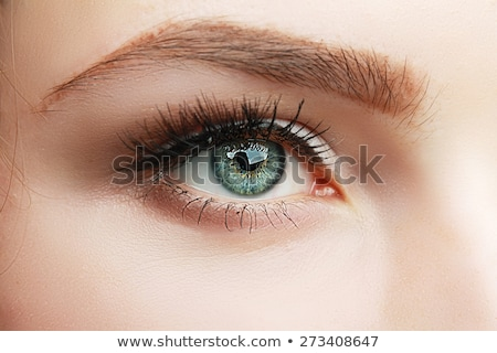 Closeup of womanish eye with glamorous makeup Stock photo © vlad_star