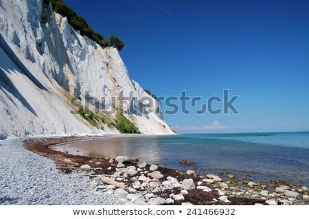 detay · uçurum · ağaç · kaya · taş · kayalar - stok fotoğraf © arrxxx