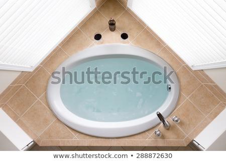 Oval bathtub full of clean water ready for a bath Stock photo © ozgur