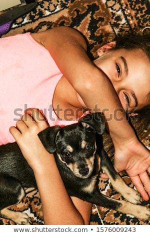 cão · preto · e · branco · pequeno · cesta · olhos - foto stock © klinker