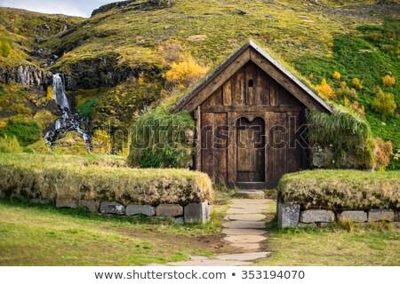 vintage turf house stock photo © hofmeester