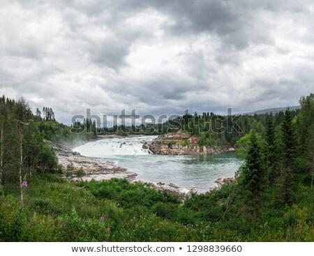 vízesés · Norvégia · víz · erdő · tájkép · hegy - stock fotó © slunicko