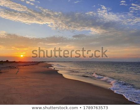 Uccelli tramonto mare sole panorama sfondo Foto d'archivio © tracer