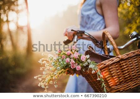 sauterelle · permanent · haut · fleurs · feuille · jardin - photo stock © svetography