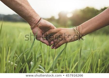 Mãos grama empresário verde grupo aperto de mão Foto stock © Paha_L