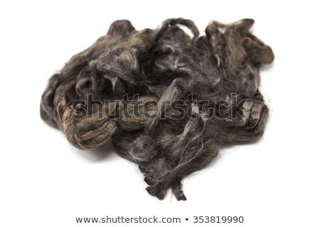 Arsenic gray piece of Australian sheep wool Merino breed close-up on a white background Stock photo © mcherevan