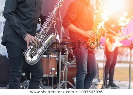 Muzikant band zanger afbeelding mijn beroep Stockfoto © UltraPop