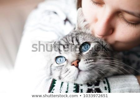 vrouw · knuffelen · kat · ontspannen · sofa · home - stockfoto © stokkete