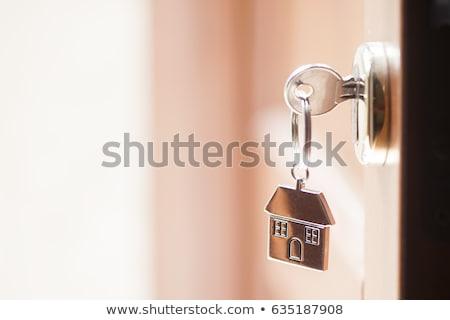 キー · 家 · 孤立した · 青 · ドア - ストックフォト © lightsource