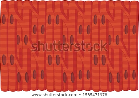 Human cardiac muscle cells Stock photo © bluering