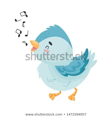 blue bird singing stock photo © sifis