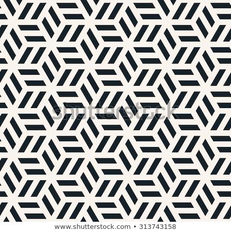 Vektor végtelenített feketefehér minimalista hálózat geometrikus minta Stock fotó © CreatorsClub