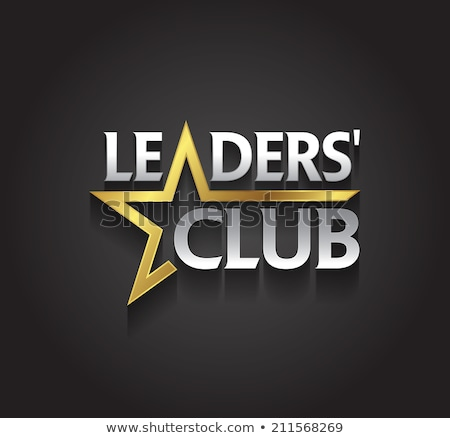 Golden Star Logo Stock photo © sdCrea