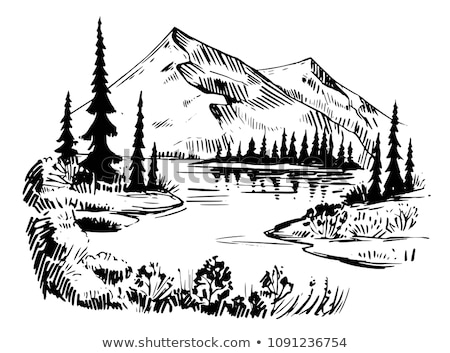 vectorized ink sketch of a mountain lake stock photo © cidepix