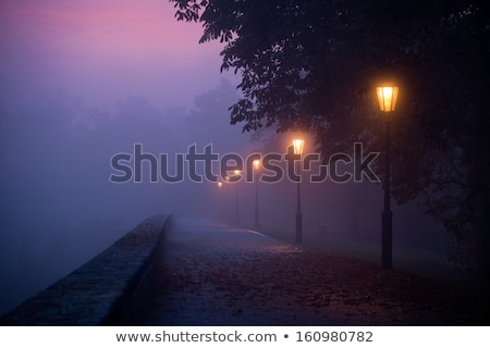 City lights and lamppost at night scenery Stock photo © carloscastilla