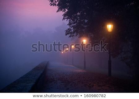 city lights and lamppost at night scenery stock photo © carloscastilla
