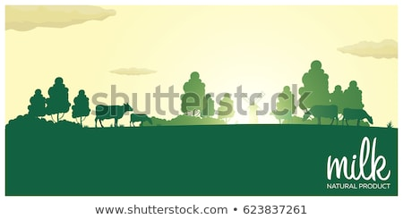 poster cows milk natural product rural landscape with mill and cows dawn in the village stock photo © leo_edition
