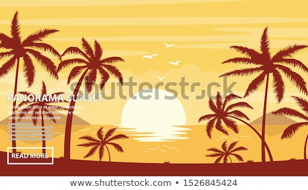 Coucher du soleil tropicales Costa Rica plage ciel Photo stock © Ionia