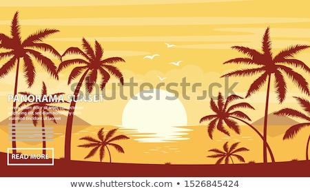 zonsondergang · strand · Costa · Rica · foto · mooie · eiland - stockfoto © ionia
