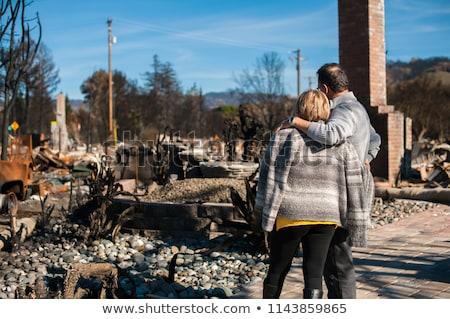 aardbeving · huis · krachtig · ramp · verzekering · bakstenen - stockfoto © ia_64