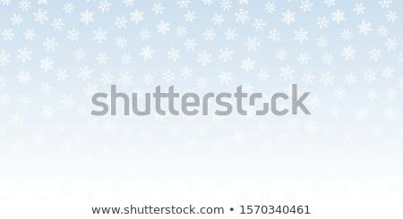 Végtelenített vektor fehér hóesés hatás kék Stock fotó © Iaroslava